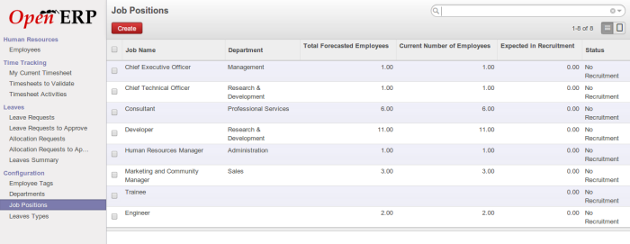 OpenERP Job Position